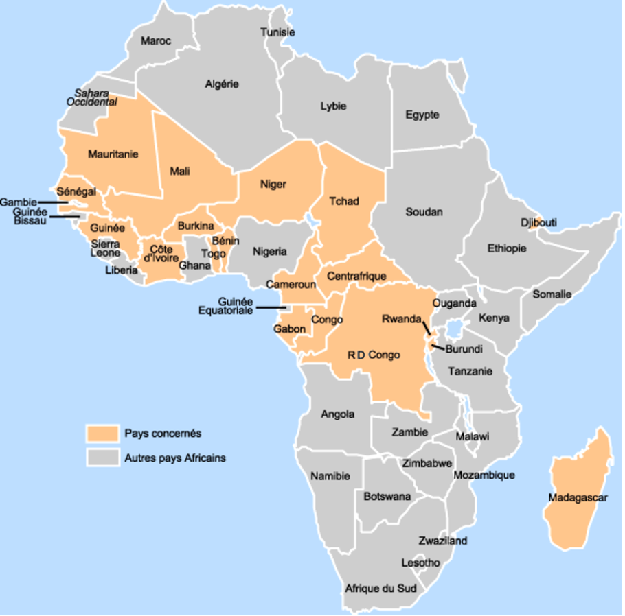 Des blogs scientifiques pour l'Afrique